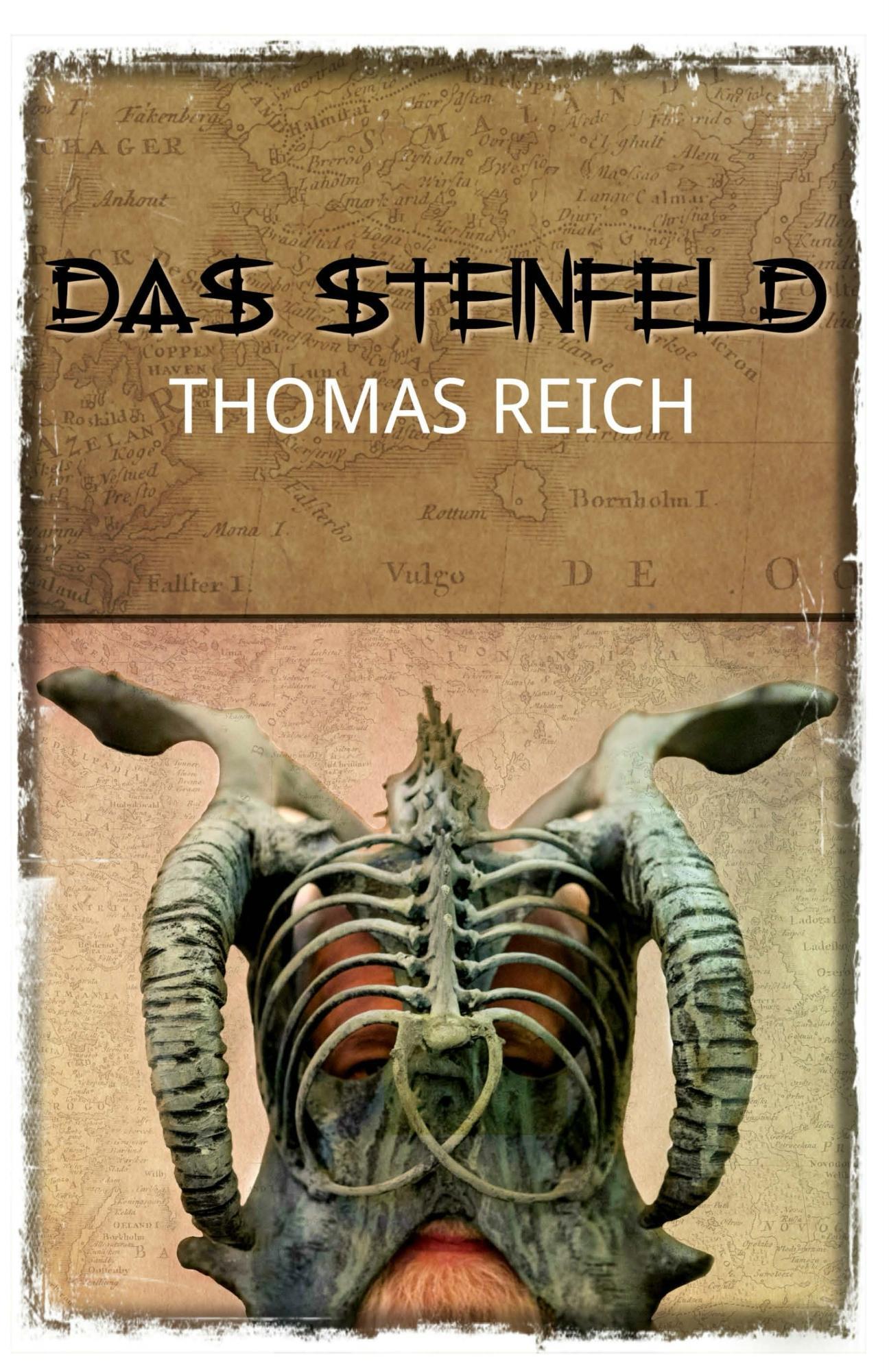 Das Steinfeld